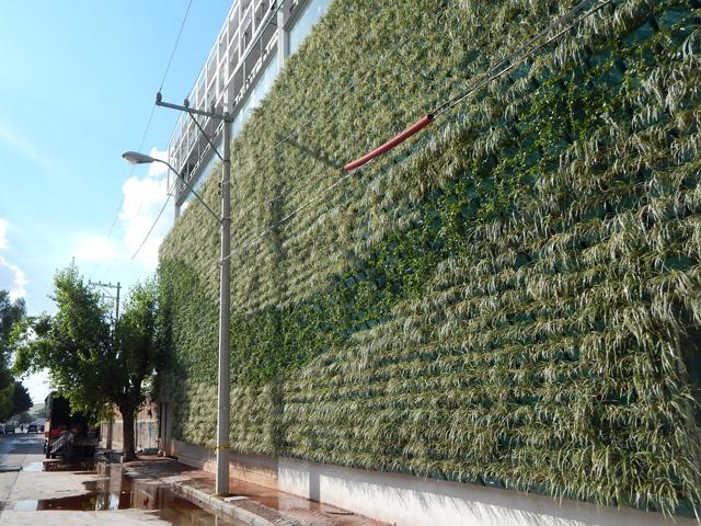 Requilibrium for Tela para muro verde
